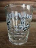Vintage Shot Glass IDAHO #B (NK727)