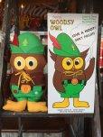 画像1: 70s Vintage Woodsy Owl Pre-school Doll w/box (J019) (1)