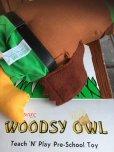 画像10: 70s Vintage Woodsy Owl Pre-school Doll w/box (J019)