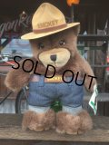 90s Vintage Smokey Bear Puppet Doll (J063)