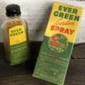 Vintage Glass Bottle EVER GREEN Garden Spray (S979)