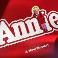 画像8: 70s Vintage LP Annie (T296)