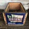 画像1: Vintage Wooden Fruits Crate Box BRIANT (T546) (1)
