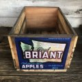 Vintage Wooden Fruits Crate Box BRIANT (T546)