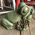 画像8: 60s Vintage Thinking Frog Plastic Bank (T983)