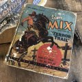 30s Vintage Book TOM MIX  and TONY Jr. in Terror Trail (B001)