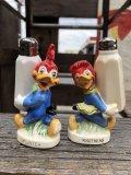 50s Vintage NAPCO Walter Lantz  Woody Woodpecker Salt & Pepper Shakers (B748)