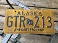 画像1: Vintage American License Number Plate GTR 213 (B795)  (1)