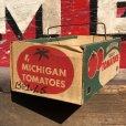 画像3: Vintage Grocery Store Tomato Handy Basket (B129)