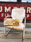Vintage FiG NEWtoNS Pillow Cushion (B438)